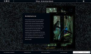 Mos Amsterdam Hageman Webdesign 3
